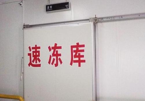 汤圆水饺速冻库