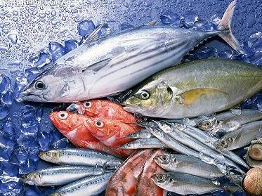 海鲜食品冻库